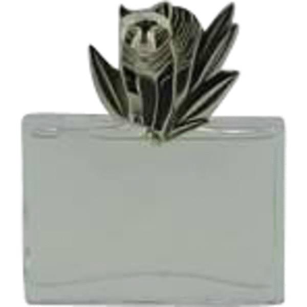 Kenzo Jungle Le Tigre Perfume