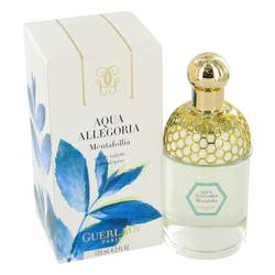Aqua Allegoria Mentafollia