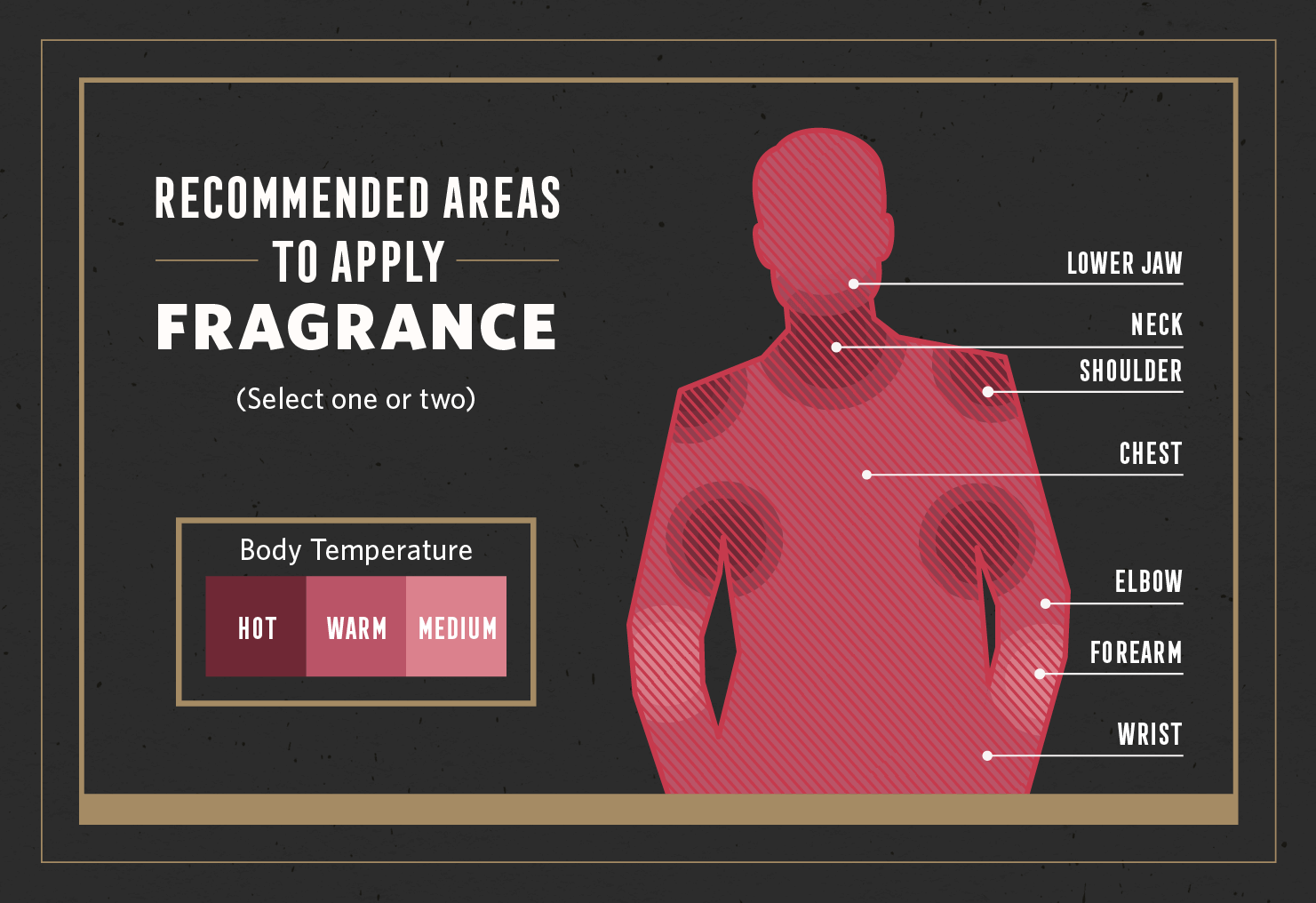 recommended areas to apply fragrance labeled illustration