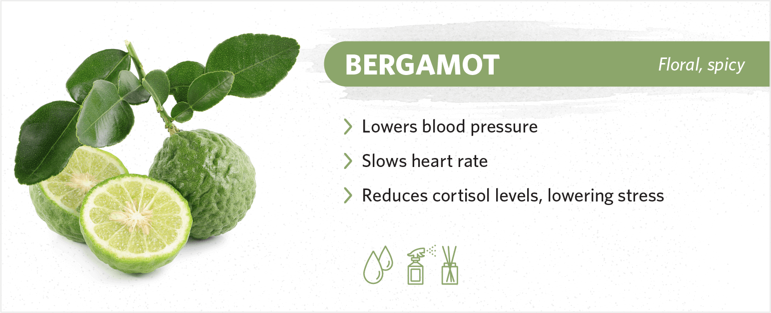 bergamot sleep benefits