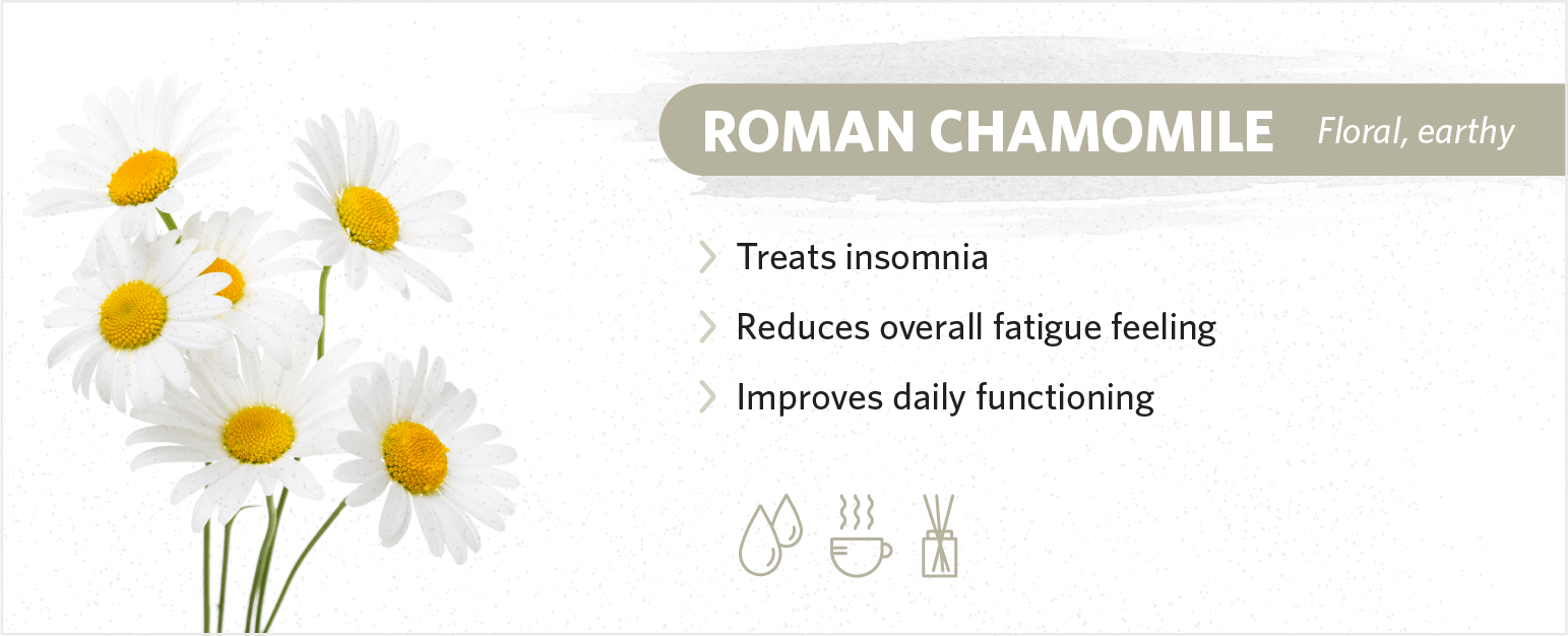 roman chamomile sleep benefits