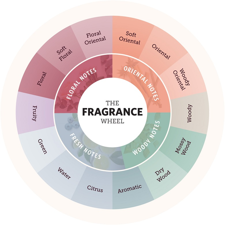 The entire fragrance wheel