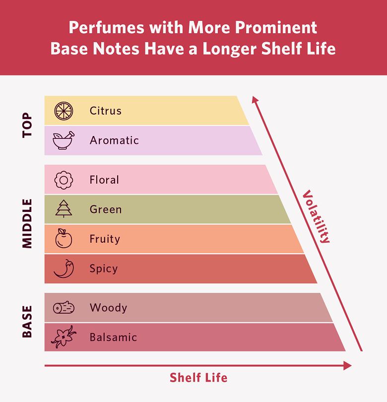 chart that explains perfumes with more prominent base notes have a longer shelf life