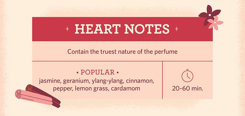 description of heart notes