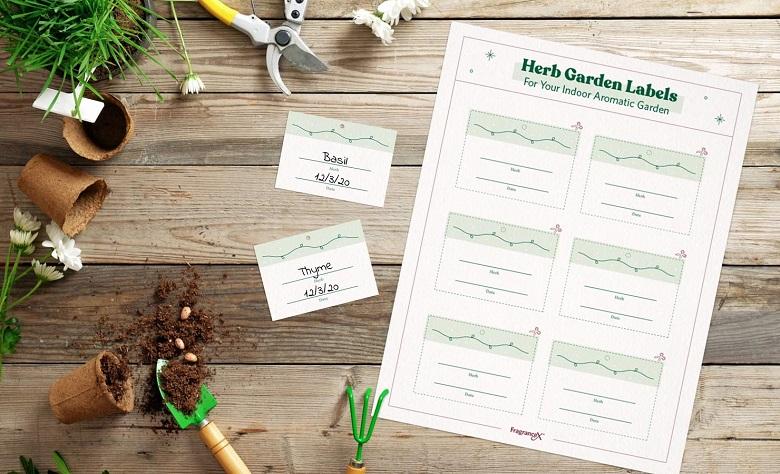 herb garden printable labels
