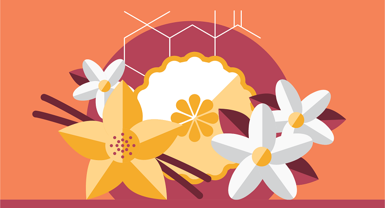 illustration of flowers and things used in making perfume
