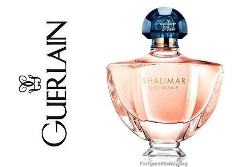 Shalimar cologne best spring fragrances