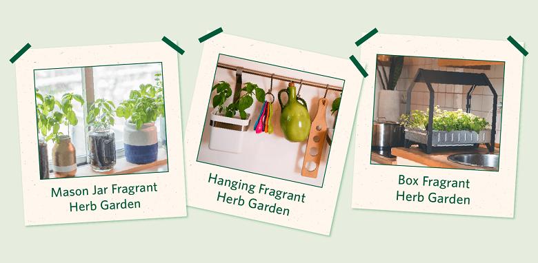 types of indoor herb gardens