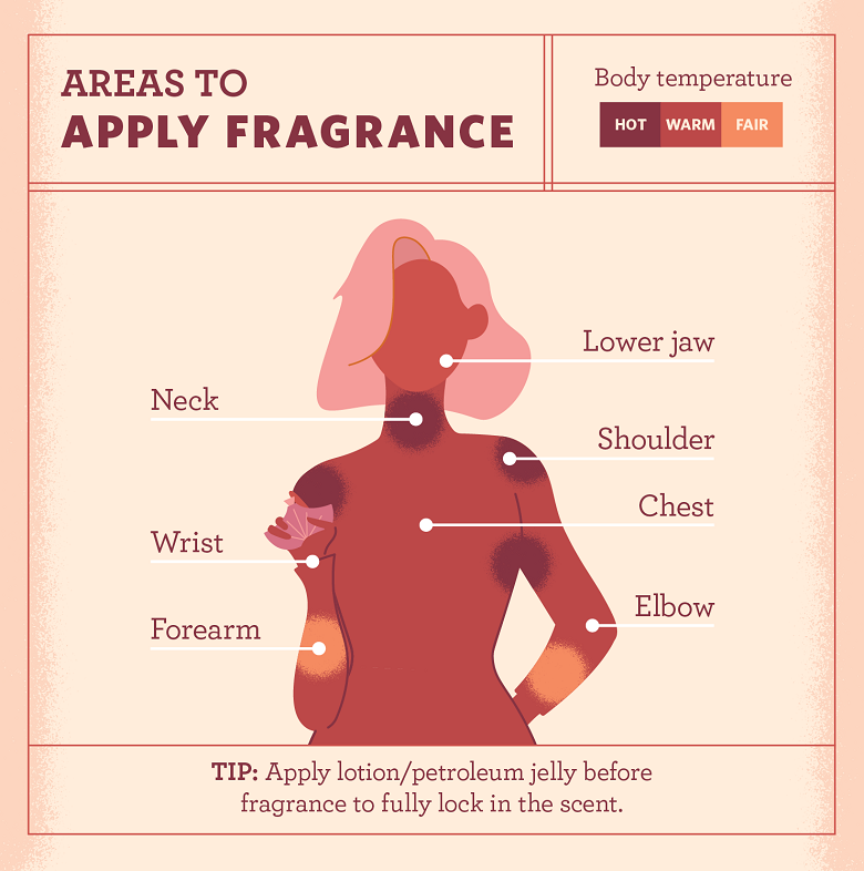 Diagram showing the heat areas and pulse points on for where to apply your fragrance.