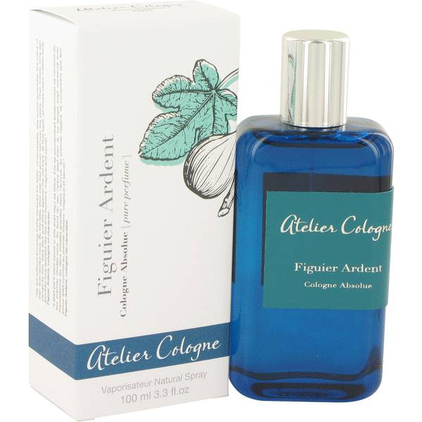 Figuier Ardent Cologne