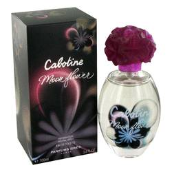 Cabotine Moon Flower