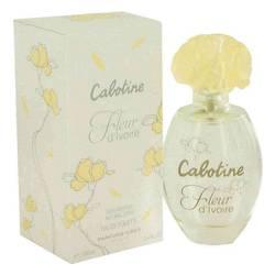 Cabotine Fleur D'ivoire