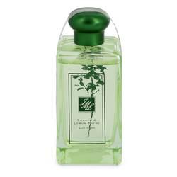 祖玛珑 草本花园 - 酸模与柠檬百里香
