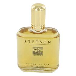 Stetson Cologne by Coty 3.5 oz After Shave (yellow color)
