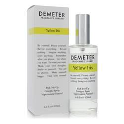Demeter Yellow Iris